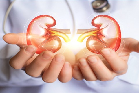 Pachet urologie - Dr. Madani Hassan